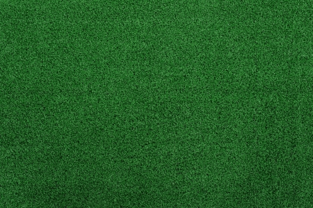fake Green grass texture and background Stock Photo - 14922924
