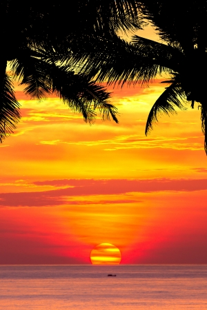 Beautiful sunset above the sea Patong, Phuket, Thailand photo