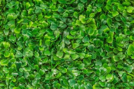 Plastic green grass background texture Stock Photo