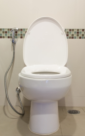 toilet Stock Photo - 19577772