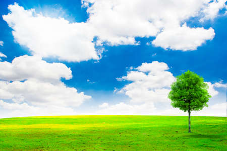 Illustration,Tree on green grass field and bright blue sky illustration