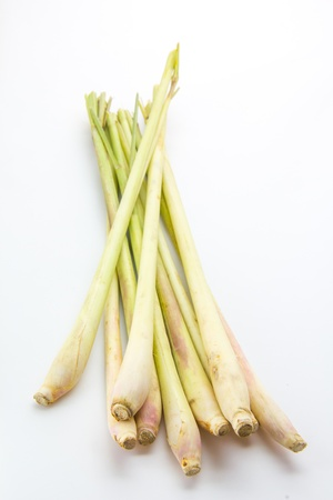 Fresh Lemon Grass on white background photo