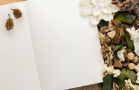 Dry flowers frame on white paper background with copy space photo