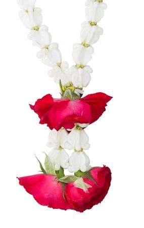 Close-up of Jasmine garland isolated on white background