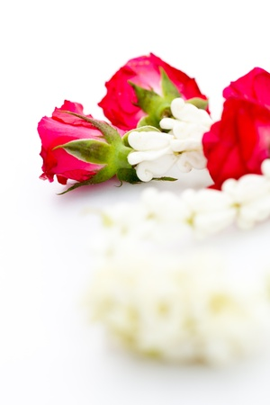 Close-up of Jasmine garland isolated on white background photo