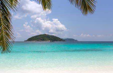 Paradise beach of Similan islands with coconut leaves, Thailand photo