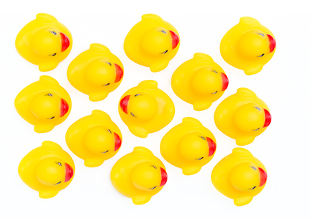 individualist: Rubber ducklings followed their parents, An individualist is sticking out the crowd
