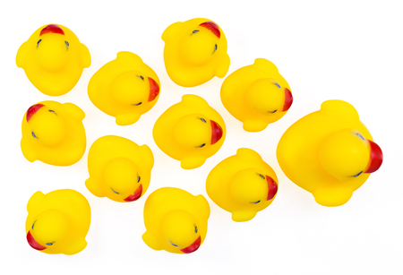 ugly duckling: Yellow rubber ducks in a row. An individualist is sticking out the crowd Stock Photo