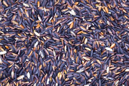 heap: Black rice Thailand (Berry Rice) use for texture and background
