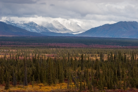 Glaciers, mountain peaks, and fall colors in the Interior of Alaska photo