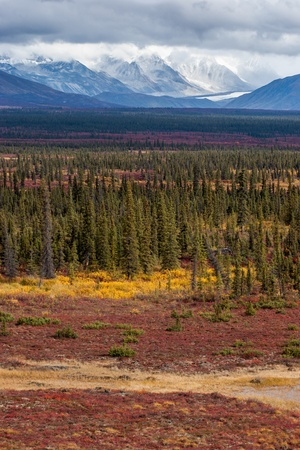 Receding glaciers and fall tundra combined into beautiful landscape