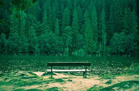 Lonely bench facing the lake photo