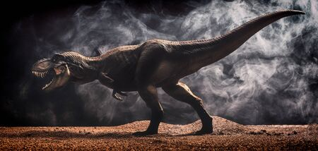 3d Illustrator - Tyrannosaurus rex isolated black background