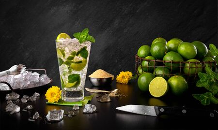 Mojito - Traditional Lemon and Mint Rum Drink