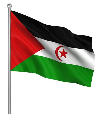 sahrawi arab democratic republic: Sahrawi Arab Democratic Republic flag , computer generated image. 3d render.