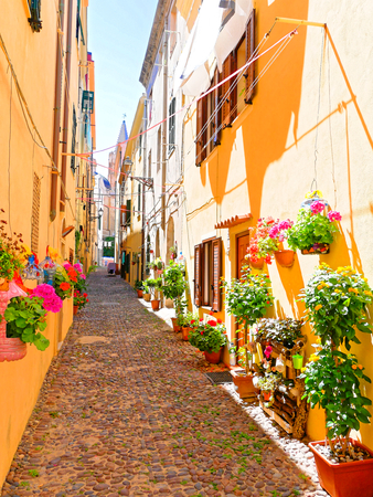 A narrow alley decorated with beautiful flowers in Alghero. Sardinia 스톡 콘텐츠
