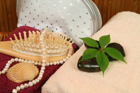 vanity bag: Spa treatment composition - brush, silver vanity bag and pearls