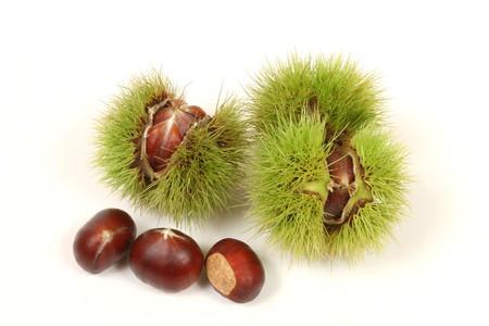 Fresh chestnuts isolated on white background photo