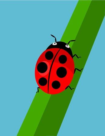 Cartoon Ladybug walking on green grass over blue sky background