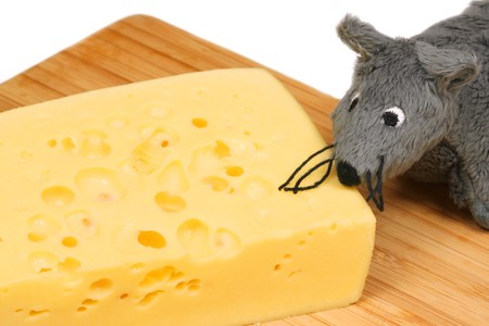 Grey plush mouse eating cheese on wooden board photo
