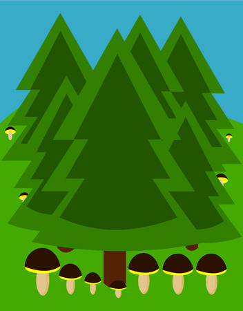 Temperate coniferous forest with growing mushrooms Vector
