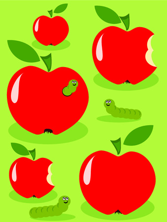 fruit worm: Red juicy glossy apples and green caterpillar feeding on them