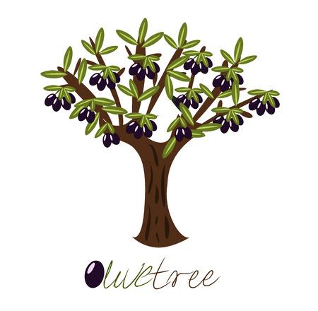 olijf: Olijf boom vol zwarte olijven.  Stock Illustratie