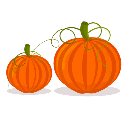cucurbit: Two pumpkins, big and small over white