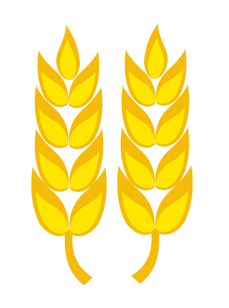 Two golden wheat ears illustration Stock Vector - 7788369