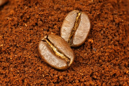 procesed: two arabic coffee beans on ground coffee background  Stock Photo
