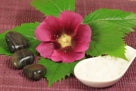 Spa treatment with mallow flower, sea salt and green leaf photo