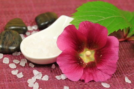 Spa treatment for beauty - mallow claret flower, salt crystals and pebbles photo