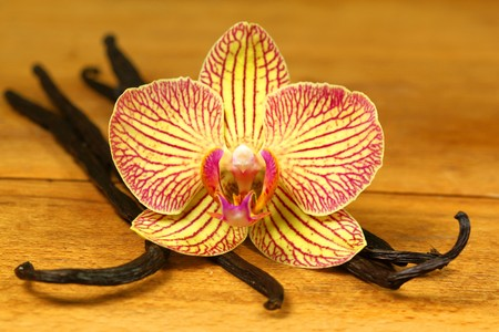 Closeup of orchid flower and aromatic vanilla pods on wooden board