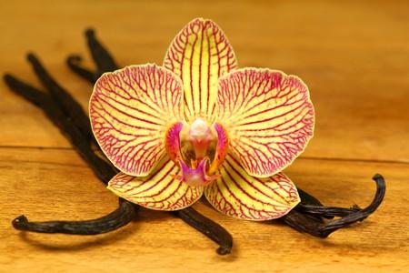 Detalle de la flor de orquídea y aromática vainilla sobre plancha de madera