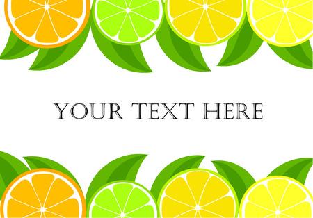 lemon lime: Telaio di agrume - arancio, limone, fette di calce e foglie.  Vettoriali
