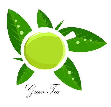 green water: Green tea white cup and fresh tea leaves over white.  Illustration
