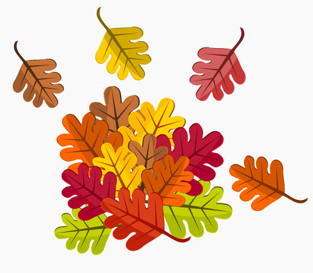 Colorful autumn leaves illustration Stock Vector - 8069077