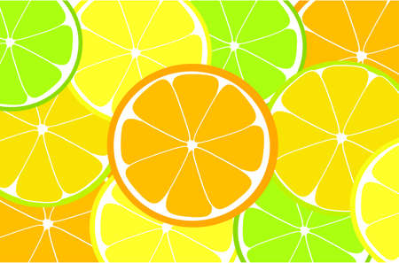 Citrus  background with orange, lemon, lime slices photo