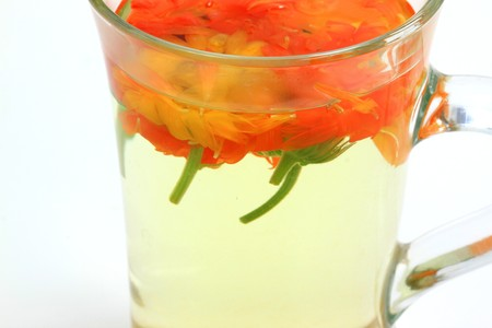 Close up of herbal tea with fresh whole marigold flowers photo