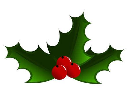 raminho: Holly berry illustration. Three leaves with fruits Ilustra��o