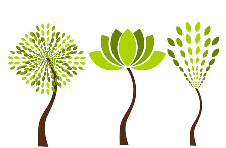 Three original  trees Vector
