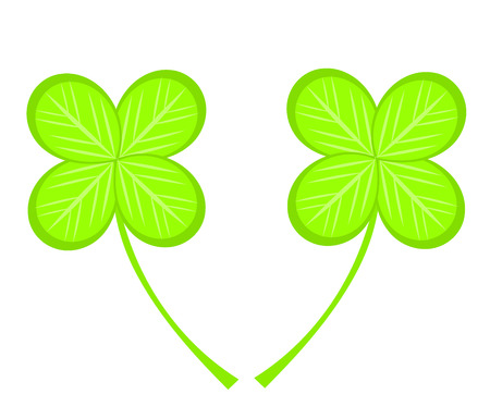 Two four-leaf clovers  illustration Vector