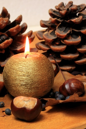 Autumnal decoration with horse chestnuts leaves and candle Stock Photo - 8379432