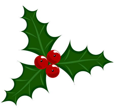 aquifolium: Holly berry icon - symbol of Christmas   illustration Illustration