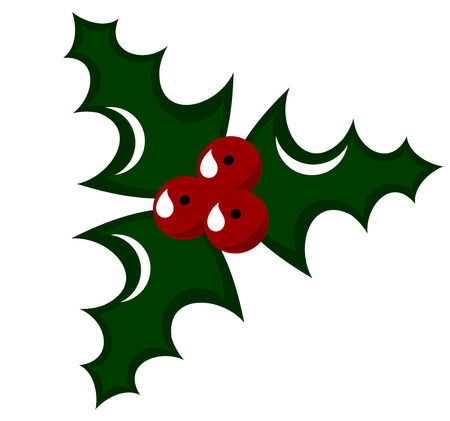 Holly berry - symbol of Christmas.  illustration Vector