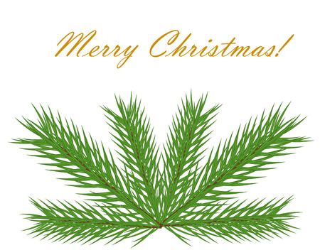 Christmas fir branch on greeting card Vector