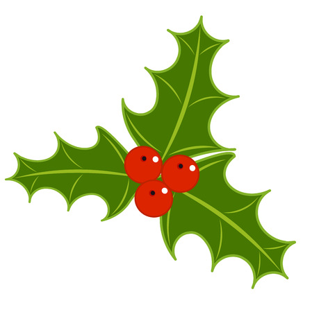 Holly berry symbol of Christmas.  Vector