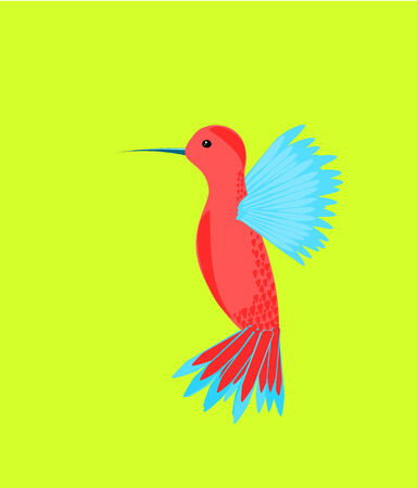 Flying hummingbird illustration Vector