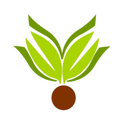 Plant motive illustration - emblem or logo concept Stock Vector - 8556091