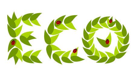 slow food: Didascalia ecologico ECO fatta di foglie con illustrazione Coccinelle